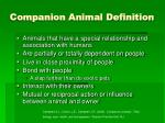 companion animal definition