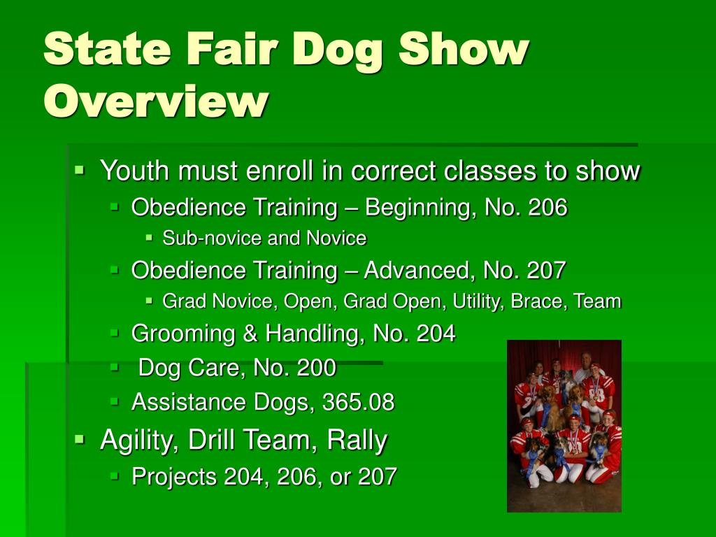 State Fair Dog Show Overview