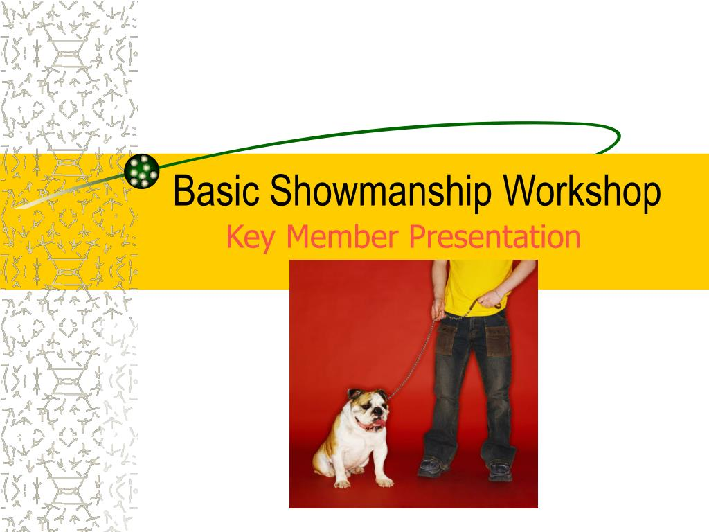 basic showmanship workshop l.