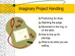 imaginary project handling