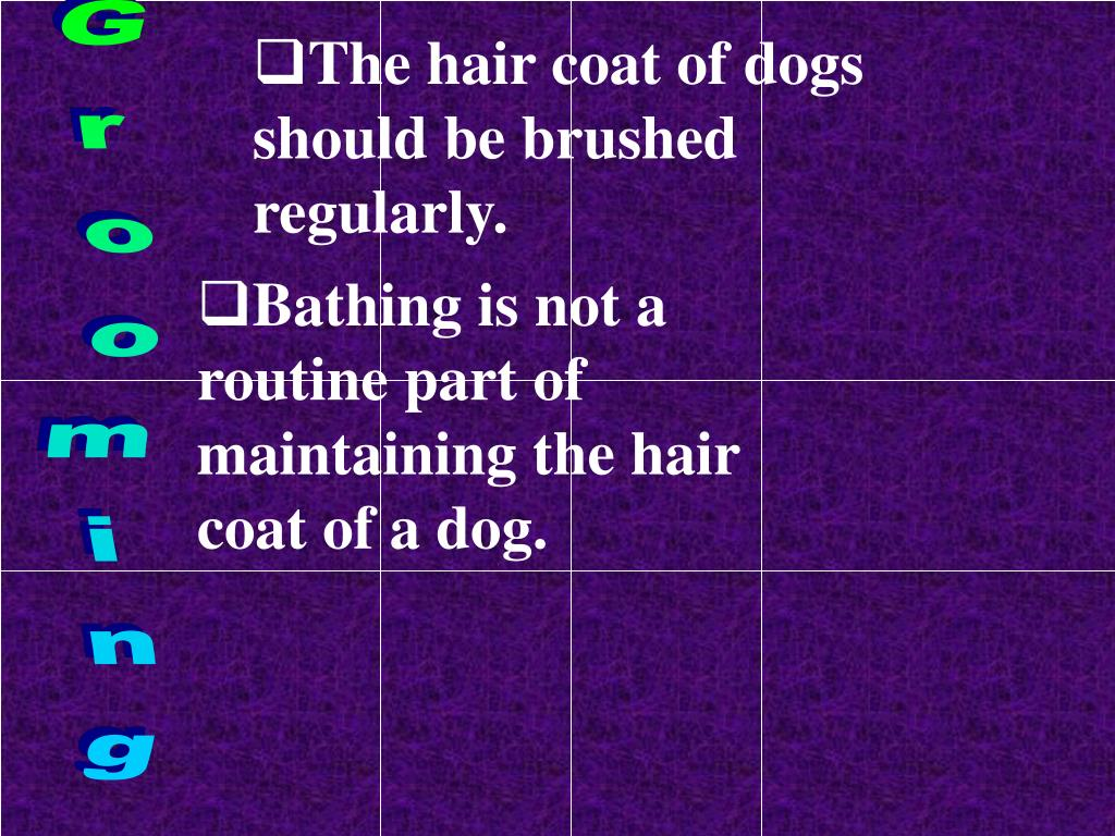 The hair coat of dogs should be brushed regularly.