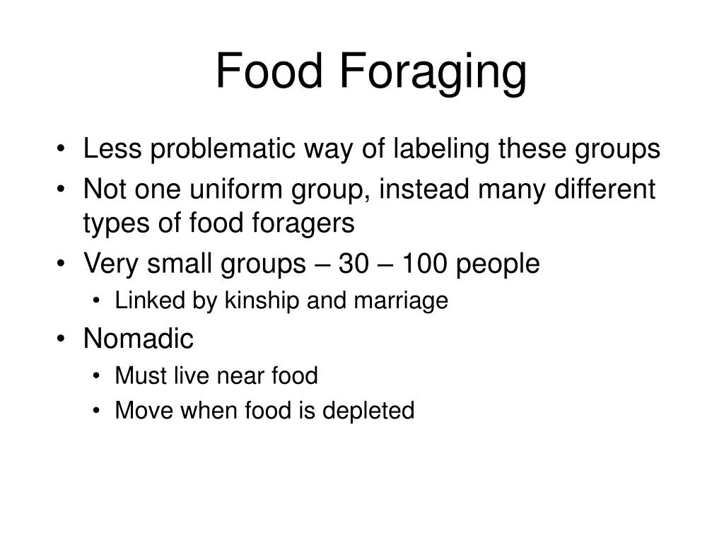 Food Foraging