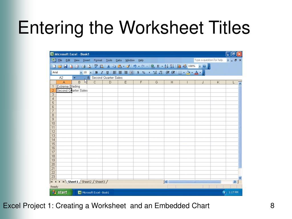 Entering the Worksheet Titles