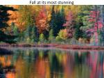 fall at its most stunning