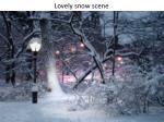 lovely snow scene