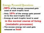 energy pyramid questions