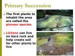 primary succession49