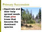 primary succession52