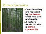primary succession53