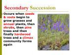 secondary succession55