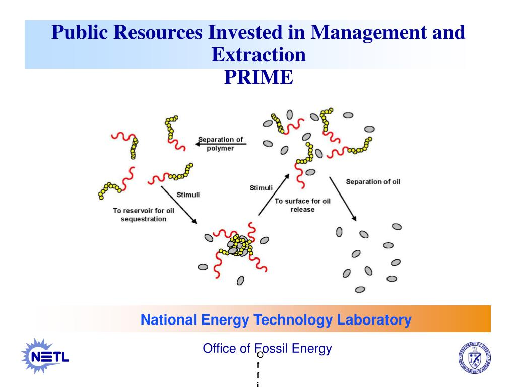 public resources invested in management and extraction prime l.