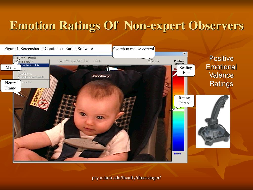 Figure 1. Screenshot of Continuous Rating Software