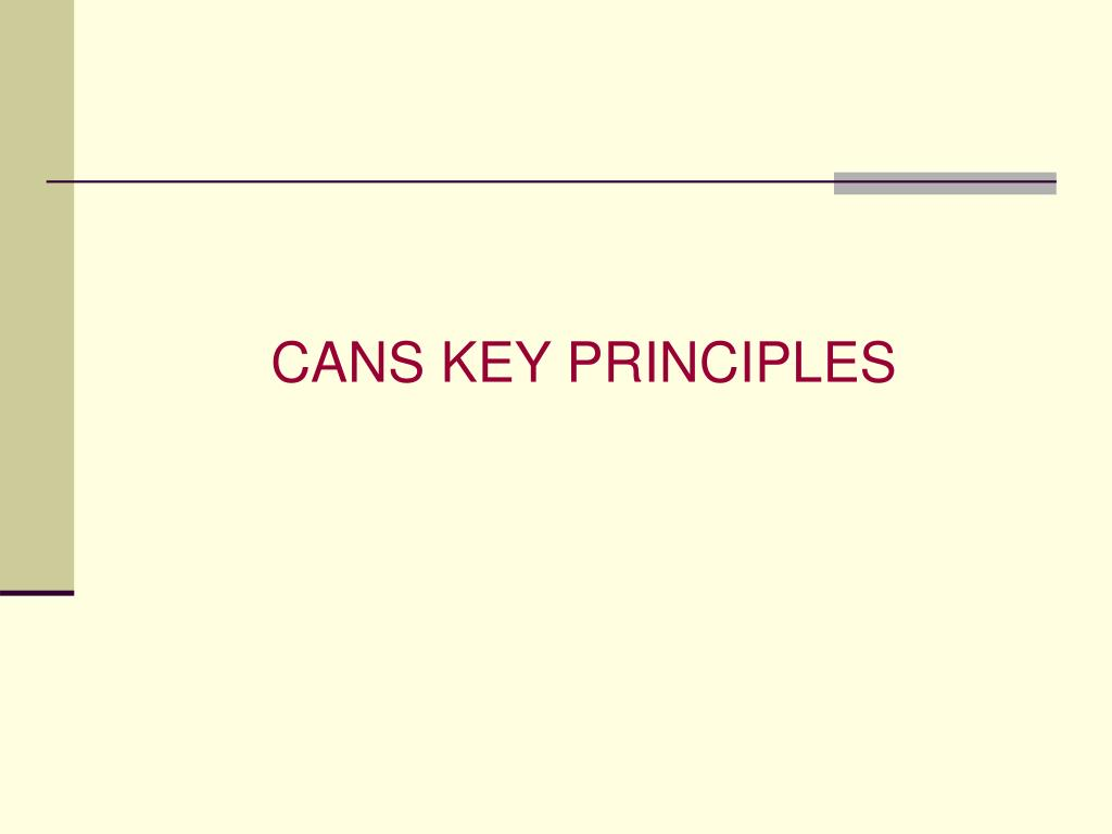 CANS KEY PRINCIPLES