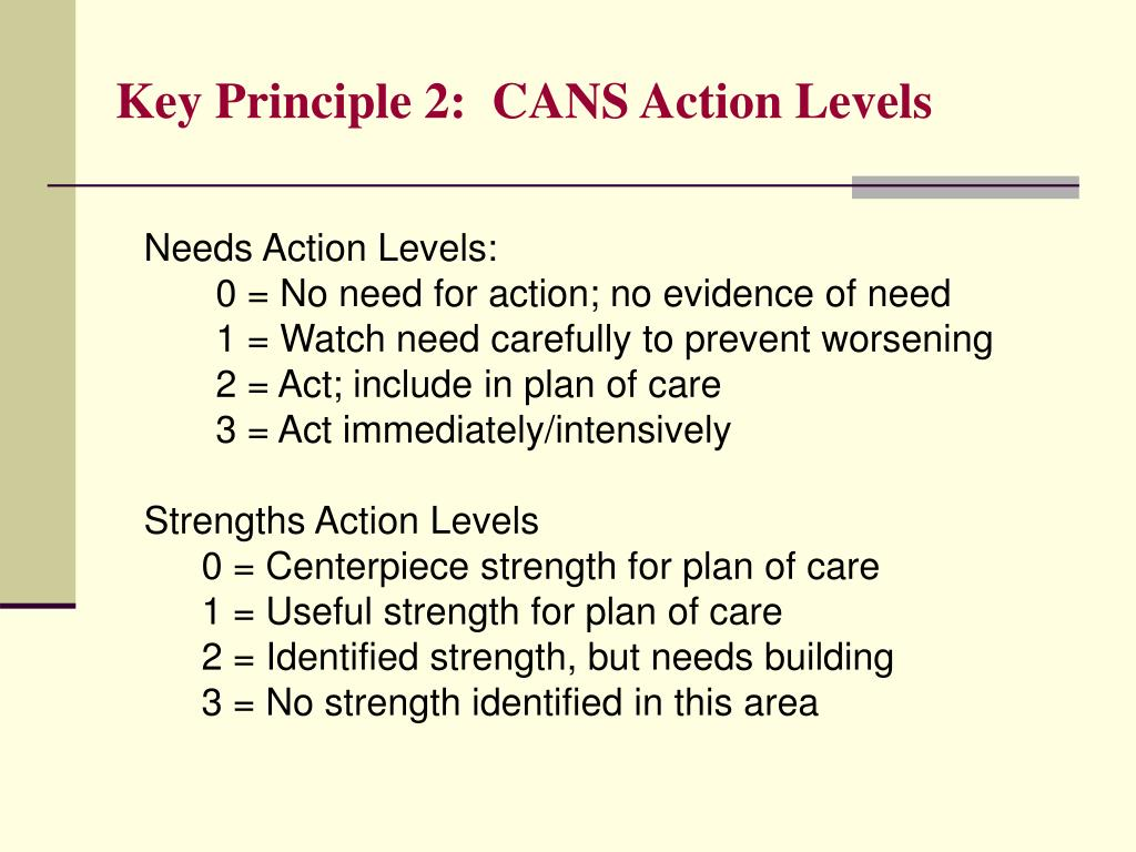 Key Principle 2:  CANS Action Levels