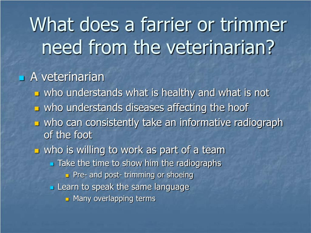 What does a farrier or trimmer need from the veterinarian?