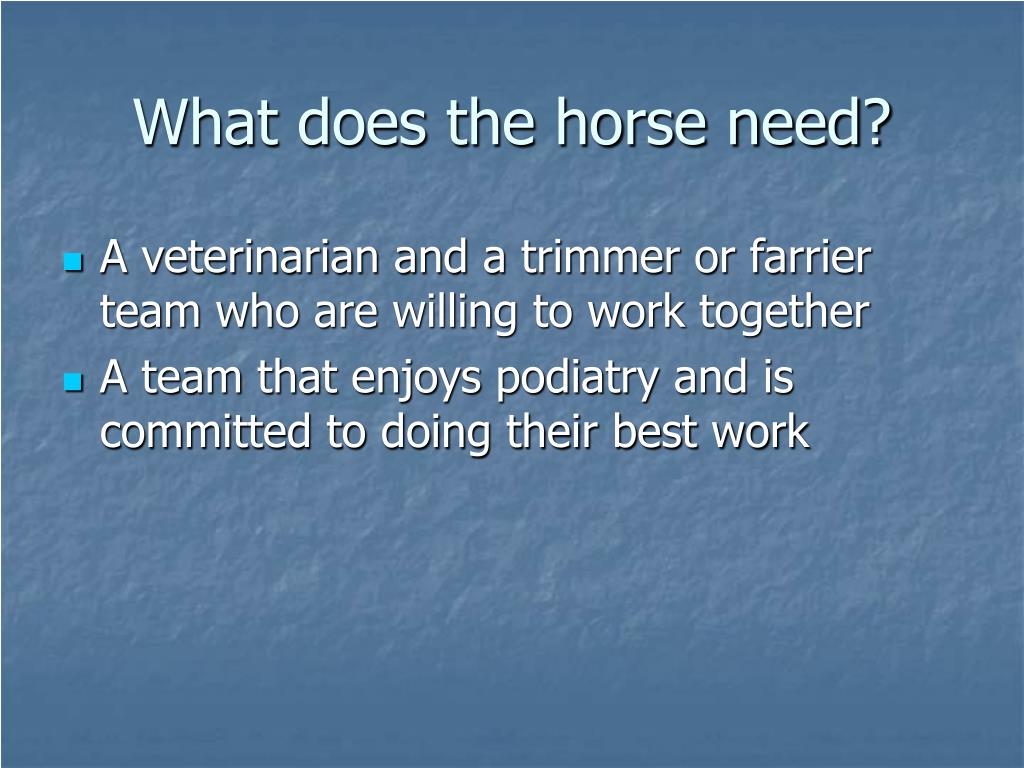 What does the horse need?