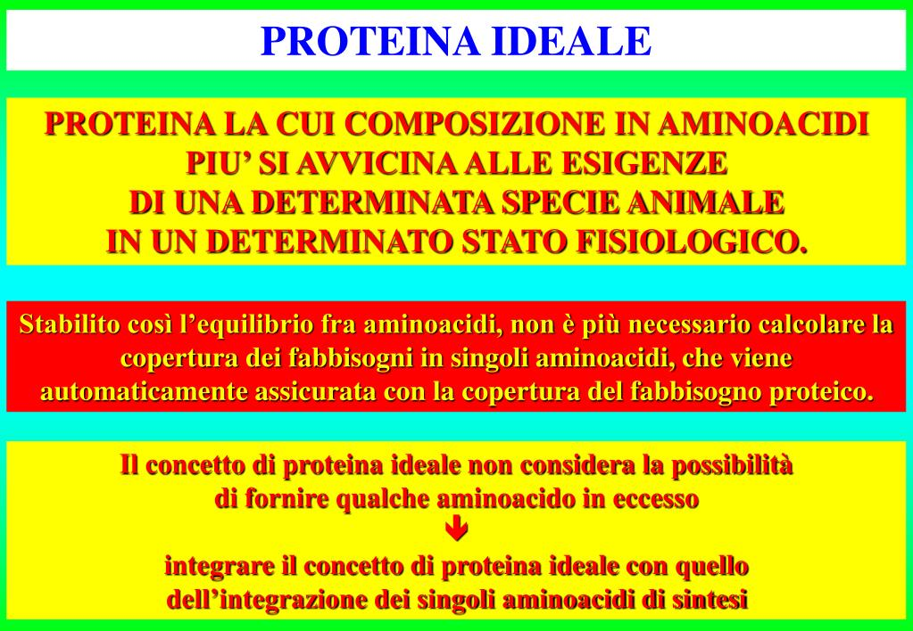 PROTEINA IDEALE