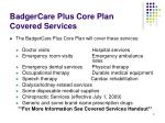 badgercare plus core plan covered services