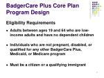 badgercare plus core plan program design