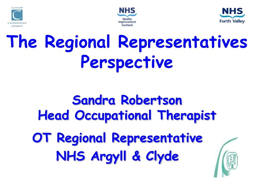 The Regional Representatives Perspective