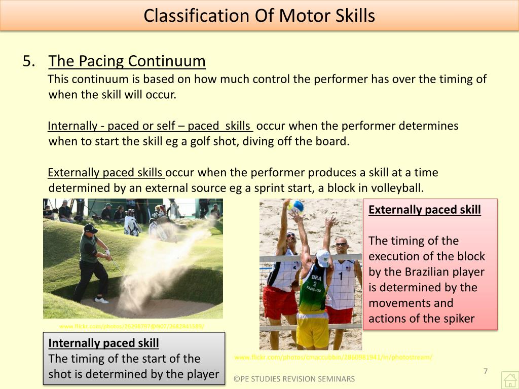 Classification Of Motor Skills