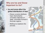 why are ice and snow important to us5