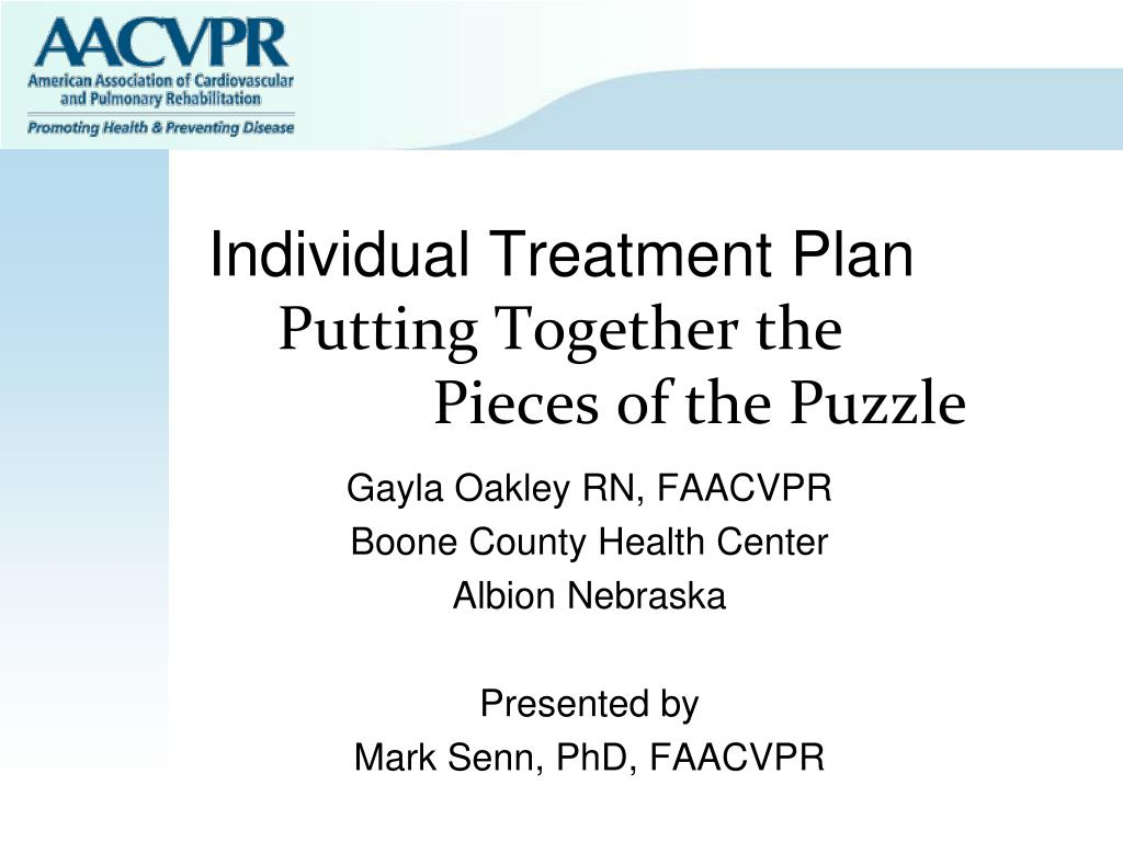 individual treatment plan putting together the pieces of the puzzle l.