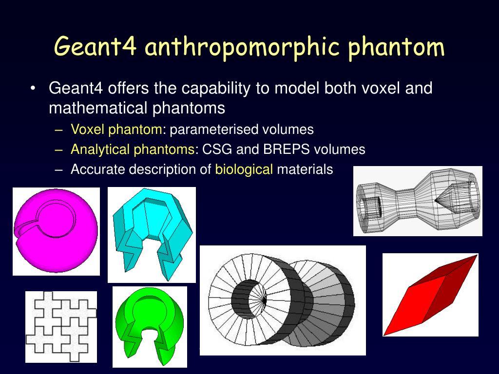 Geant4 anthropomorphic phantom
