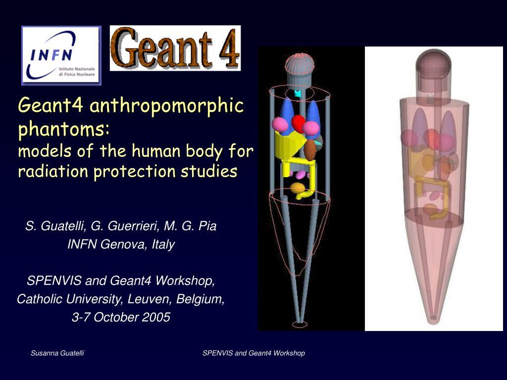 Geant4 anthropomorphic phantoms: