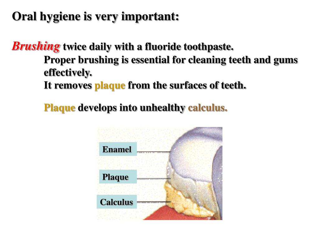 Oral hygiene is very important: