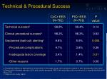 technical procedural success
