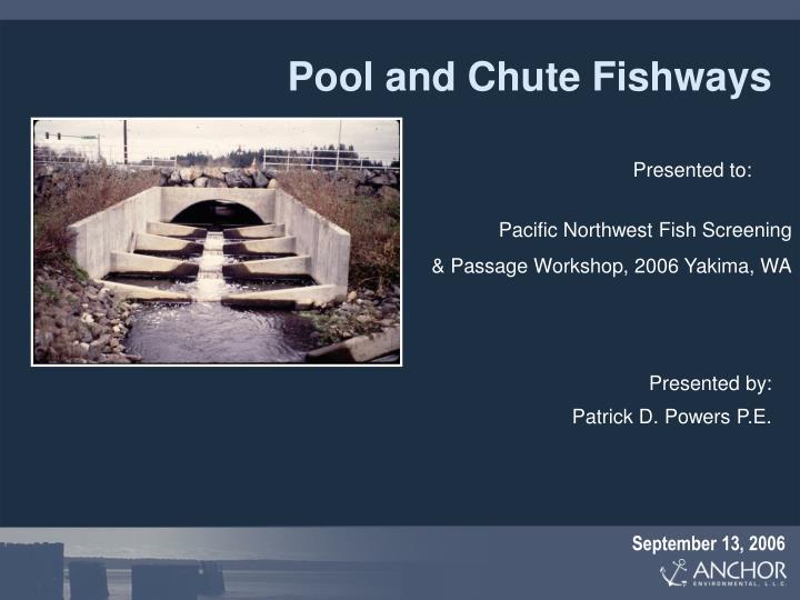 pool and chute fishways n.