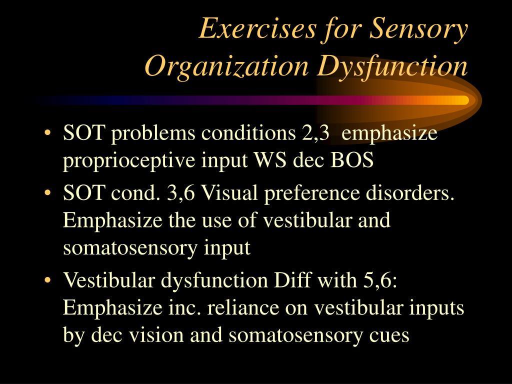 Exercises for Sensory Organization Dysfunction