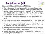 facial nerve vii32