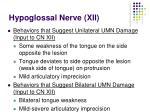 hypoglossal nerve xii55