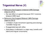 trigeminal nerve v28