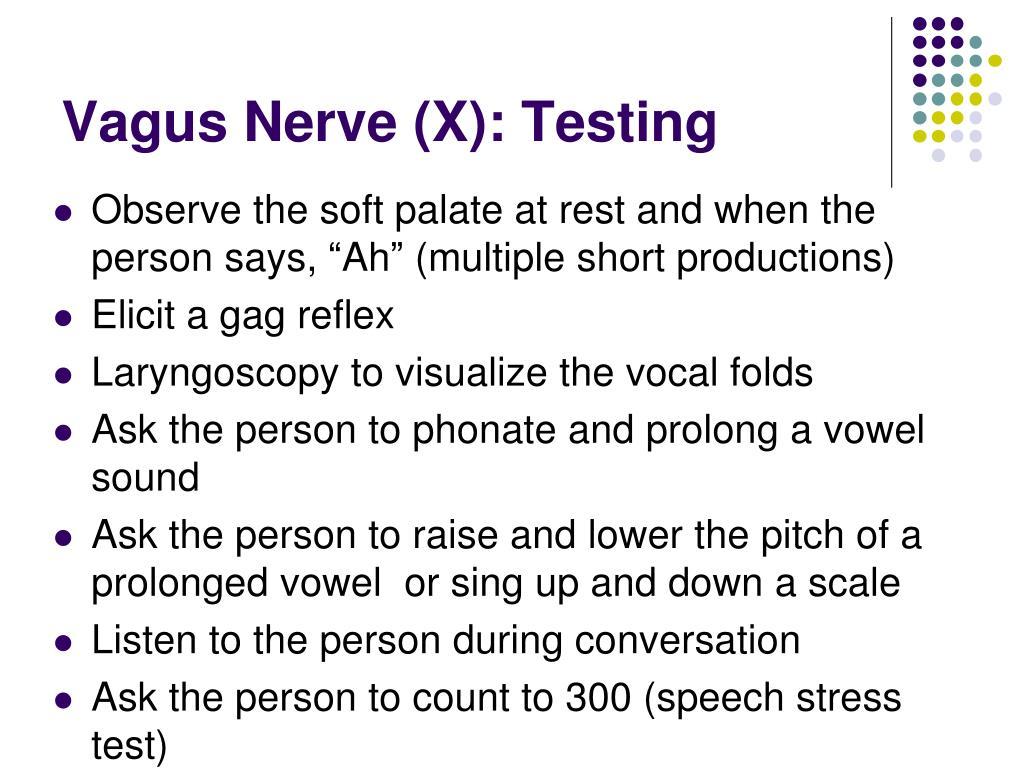 Vagus Nerve (X): Testing