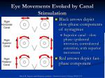 eye movements evoked by canal stimulation