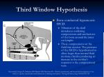 third window hypothesis25