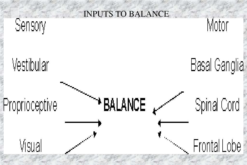 INPUTS TO BALANCE