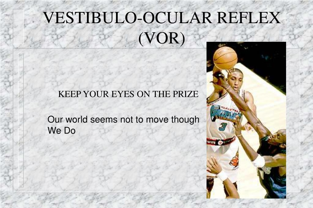 VESTIBULO-OCULAR REFLEX (VOR)