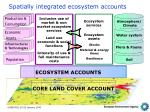 spatially integrated ecosystem accounts