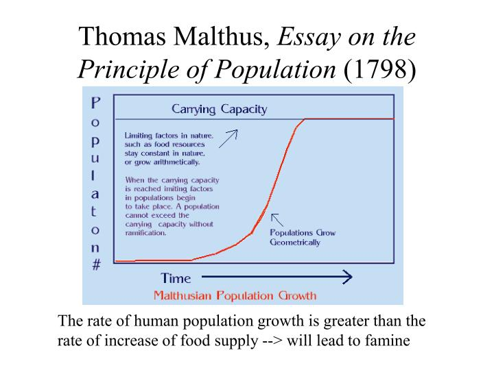 malthus essay of the principle of population Thomas malthus 1766 - 1834 study play an essay on the principle of population as it affects the future improvement of society 1798 a book in which malthus wrote.