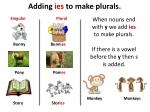 adding ies to make plurals