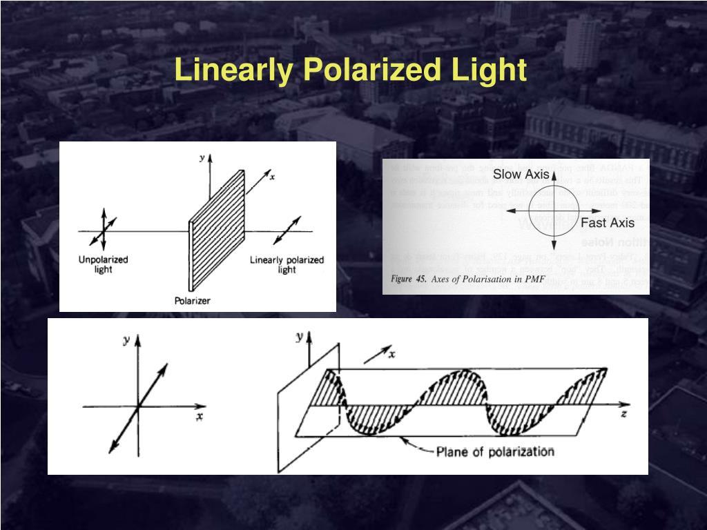 Linearly Polarized Light
