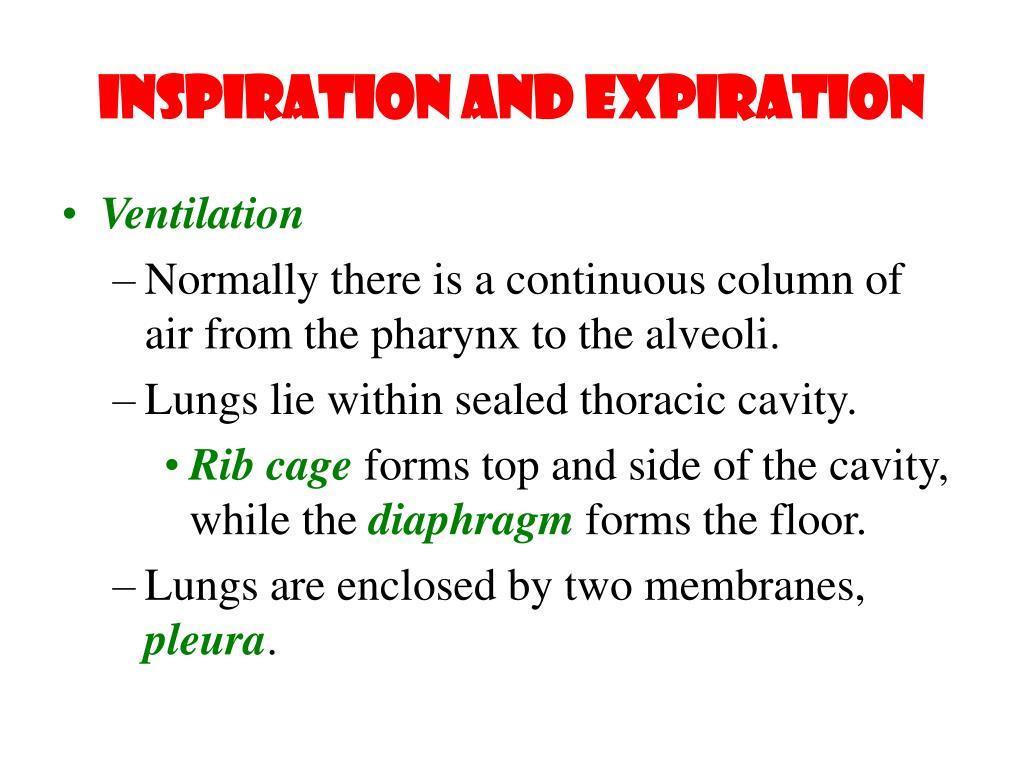 Inspiration and Expiration