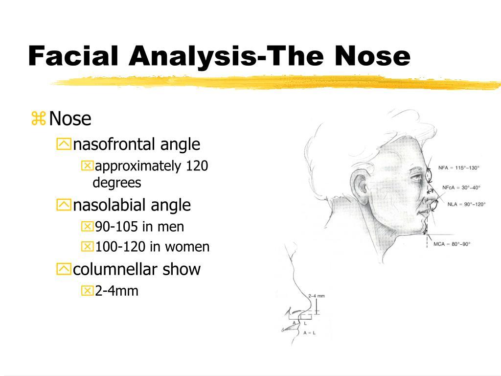 Facial Analysis-The Nose