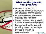what are the goals for your program
