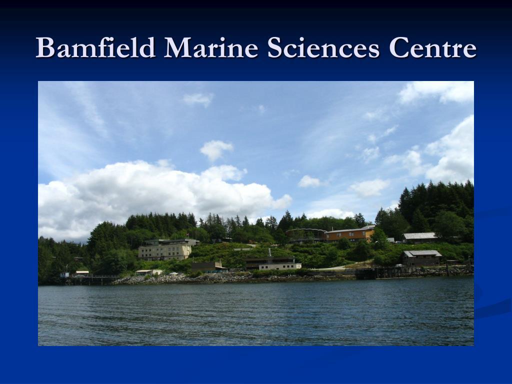 bamfield marine sciences centre l.
