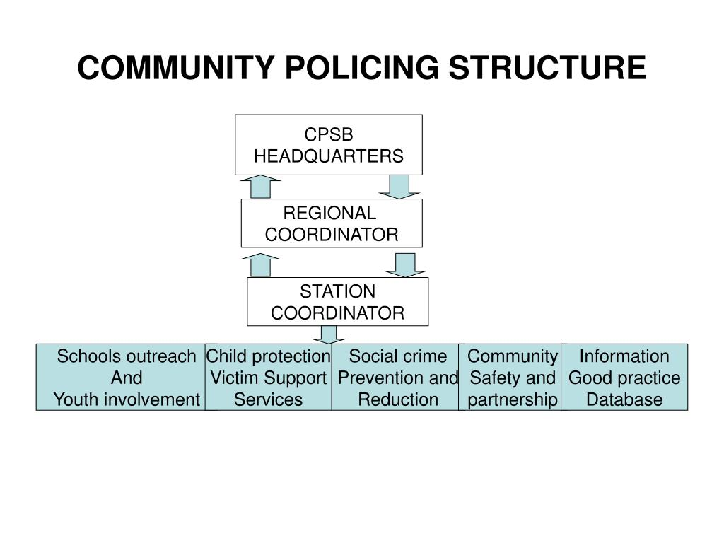 COMMUNITY POLICING STRUCTURE